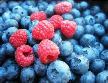 Visites de Suivi Nutritionnel des fruits rouges