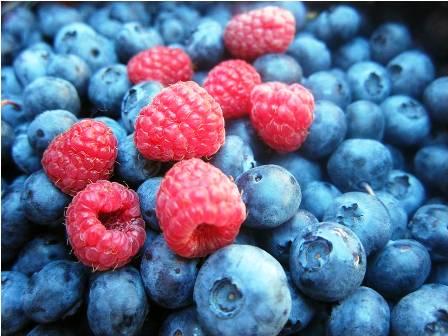 fruits rouges du Maroc
