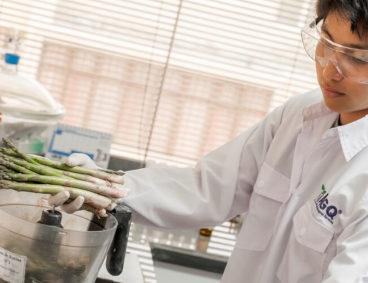 Analyse de Matrina dans fruits et légumes