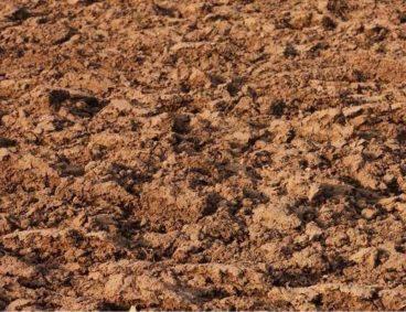 Projet d'analyse de 6000 sols au Senegal