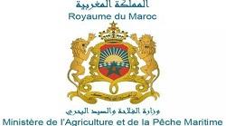 ministere de l'agriculture et de la Peche maritime